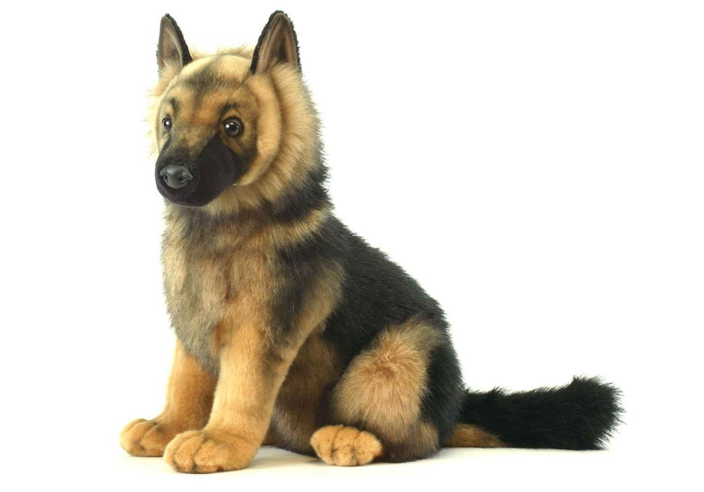 Amazon German Shepherd