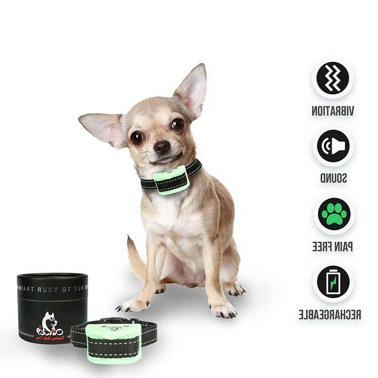 Best Bark Collar For Chihuahua