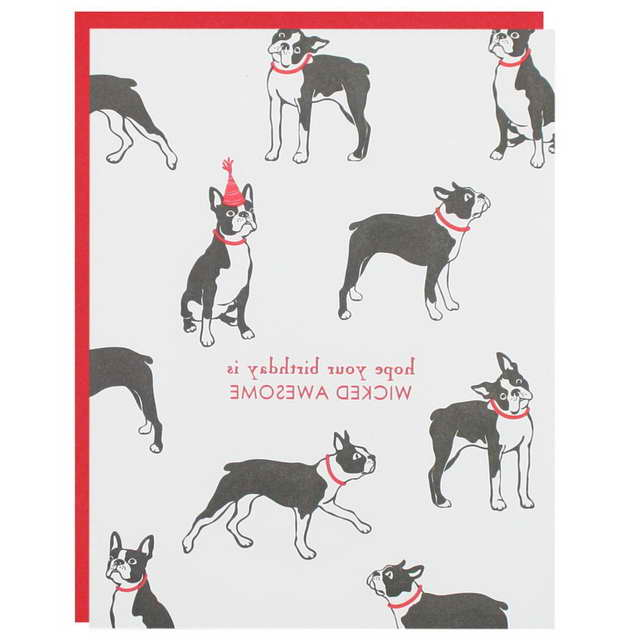 Boston Terrier Birthday Card Pets And Dogs