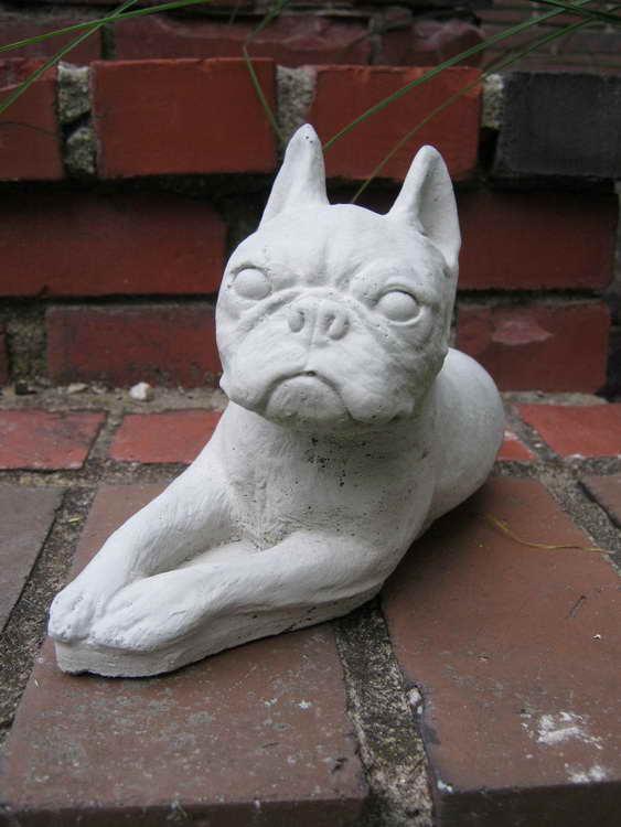 Perfect Boston Terrier Statue Garden