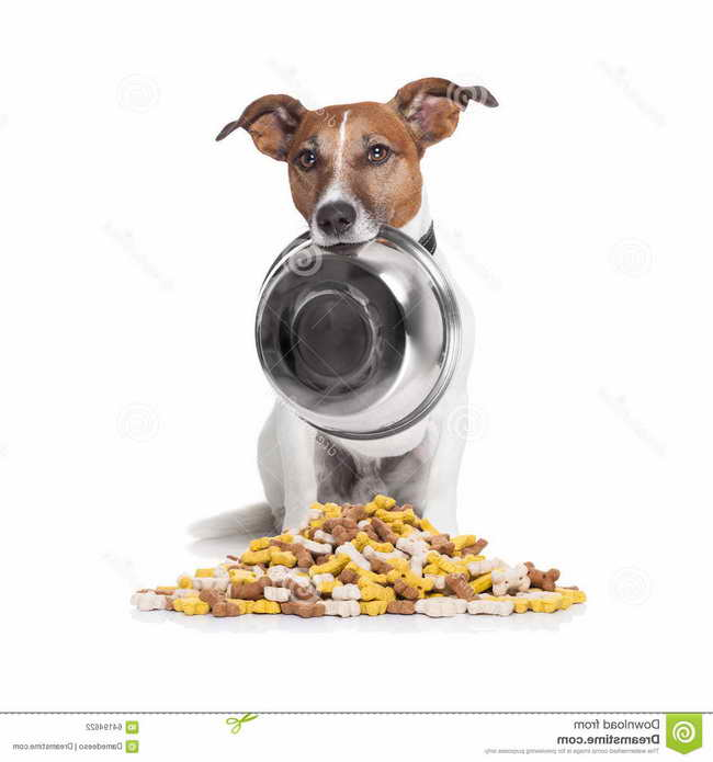 Jack Russell Foods