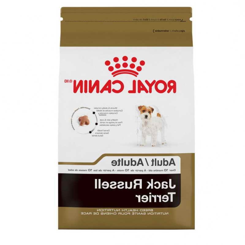 Jack Russell Terriers Food