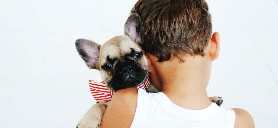 financial aspect raising a pet